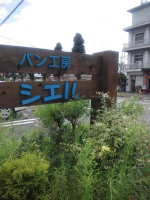 Sdsc_0637